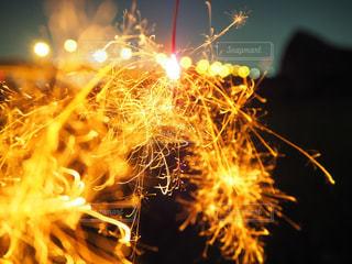 花火の写真・画像素材[662112]