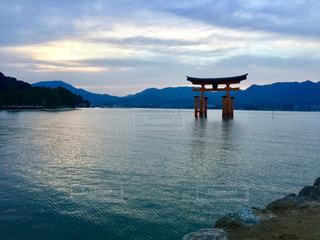 夕暮れの厳島神社の写真・画像素材[811739]