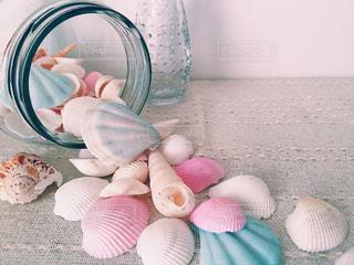 空き瓶と貝殻の写真・画像素材[1225906]