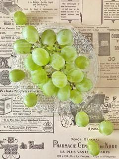 マスカットオブアレキサンドリアの写真・画像素材[1464600]