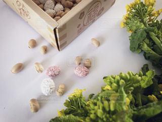 菜の花,豆,節分,置き画,豆まき,2月,紅白豆
