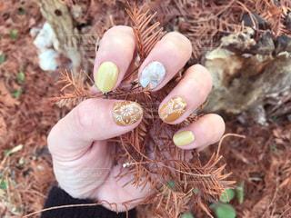 冬ネイルと落ち葉を掴んだ手の写真・画像素材[1787861]