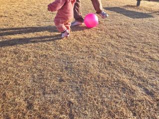 パパとボール遊び♪の写真・画像素材[1811841]