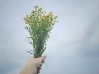 女性,空,花,春,花束,青,黄色,手,曇り,可愛い,ソラ,草木