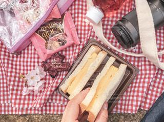 カメラ,桜,カバン,お花見,ピクニック,チョコレート,たまごサンド,おうちカフェ,ポーチ,アーモンドロカ,ロカピンク