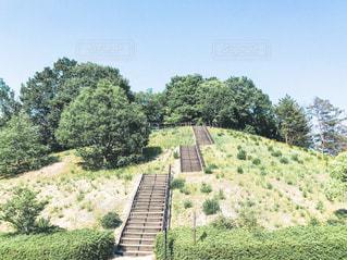 小丘の階段の写真・画像素材[2156404]