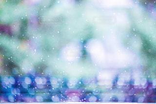 雨の日の水滴キラキラの写真・画像素材[2158757]