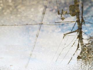 雨の写真・画像素材[2257391]