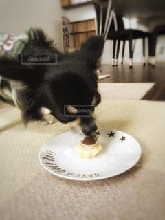 誕生日に初めてのケーキ♡ - No.799692