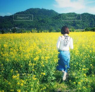 春コーデで菜の花畑へお散歩の写真・画像素材[1144052]