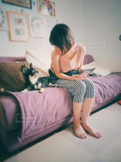愛犬と見つめあって会話の写真・画像素材[1185660]