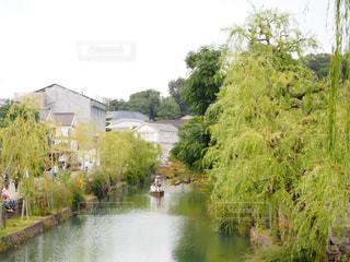 倉敷美観地区の街並みの写真・画像素材[1598217]