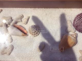 テーブルのショーケースのミニ砂浜にピースサインの写真・画像素材[1873427]