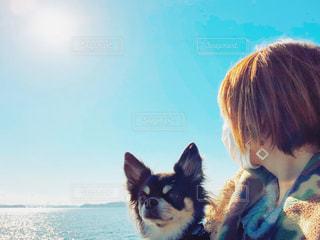 青空と瀬戸内海とチワワとあたしの写真・画像素材[2007852]