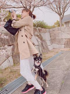 オイラも撮って〜撮影に夢中の飼い主を呼ぶ愛犬の写真・画像素材[2019173]