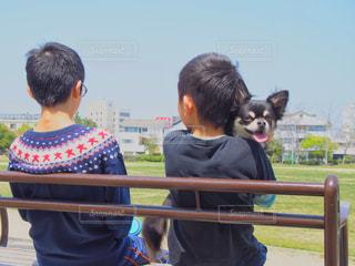 公園で散歩、休憩中の少年たちとチワワの写真・画像素材[2055380]