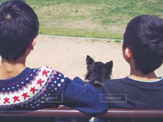 少年たちとチワワ、散歩休憩中の写真・画像素材[2055384]
