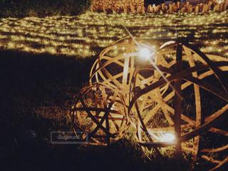 風景,夜景,芝生,ライト,竹,港,和風,フィルム,フィルム写真,竹あかり,フィルム風,フィルムフォト