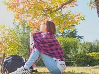 秋の公園でひと休みの写真・画像素材[2511221]
