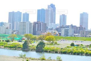 武蔵小杉のビル群の写真・画像素材[435278]