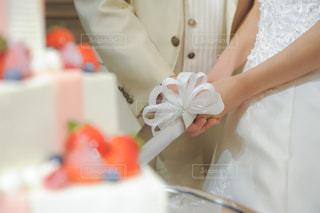 ケーキの写真・画像素材[508033]
