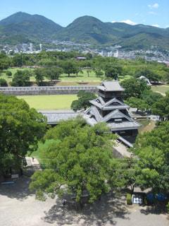 風景,空,建物,屋外,雲,城,お城,旅行,熊本,熊本城,日本,石垣