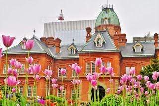 色とりどりの花と北海道庁旧本庁の写真・画像素材[883585]