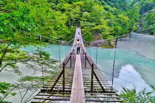 寸又峡 夢の吊り橋の写真・画像素材[1001003]