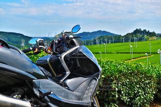 バイク越しの茶畑の写真・画像素材[1046453]