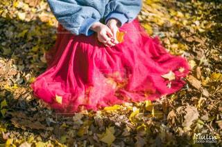 花を保持している小さな女の子の写真・画像素材[869124]