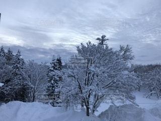 冬,雪,寒い