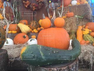 食べ物,秋,海外,野菜,かぼちゃ,パンプキン,おいしい,収穫祭