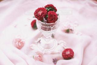 皿に赤と白のケーキの写真・画像素材[1440671]