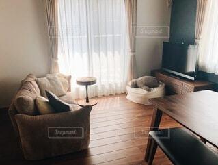 革張りの椅子のあるリビングルームの写真・画像素材[3920562]