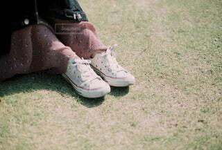 芝生の上に座っている人の写真・画像素材[4417743]