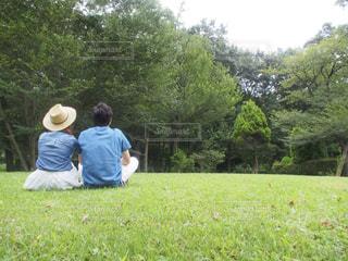 自然の写真・画像素材[455097]