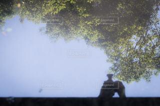 木のぼやけた写真 - No.1083689