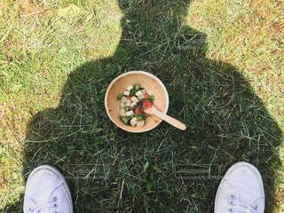 芝生で横になっている人 - No.1085870