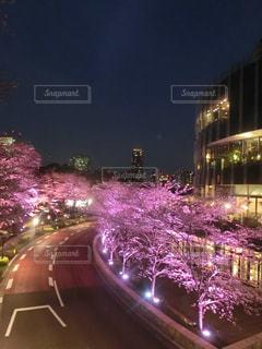 春 - No.271780