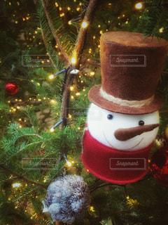 クリスマスの写真・画像素材[264784]