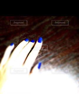 青の写真・画像素材[895727]
