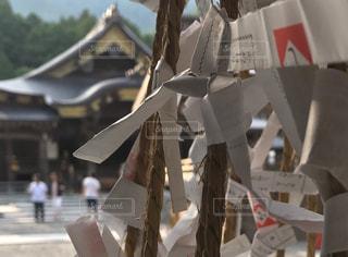 近くに傘のアップ - No.964539