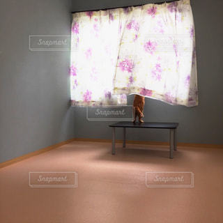 寝室ベッドと鏡の写真・画像素材[1328035]