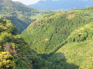 緑豊かな丘の中腹に緑のビューの写真・画像素材[1179184]