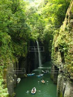 森の中の大きな滝の写真・画像素材[1179302]
