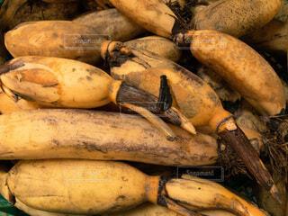 食べ物,黄色,野菜,食品,食材,蓮根,フレッシュ,ベジタブル,積み上げ,沖縄レンコン,穫りたて