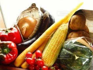 食べ物,カラフル,野菜,ミニトマト,食品,盛り合わせ,食材,パプリカ,フレッシュ,ベジタブル,ナス,カボチャ,とうもろこし,じゃがいも,タマネギ,玉葱,島人参