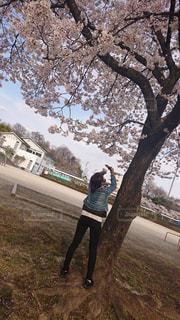 女性,風景,空,花,春,桜,屋外,満開,樹木,人,Gジャン