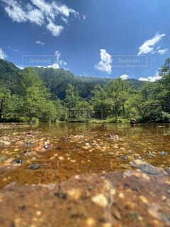自然,風景,空,屋外,湖,雲,川,水面,山,樹木,長野,上高地,草木,国内旅行
