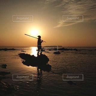 自然の写真・画像素材[11002]